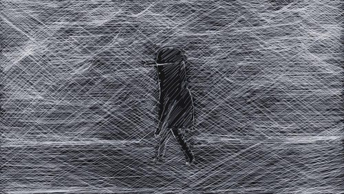 wanderer.17